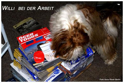 copyright-rickys-havaneser-berlin1